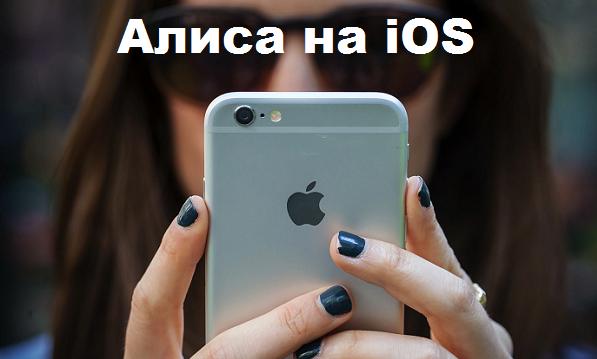 скачать Алису на Iphone - iOS