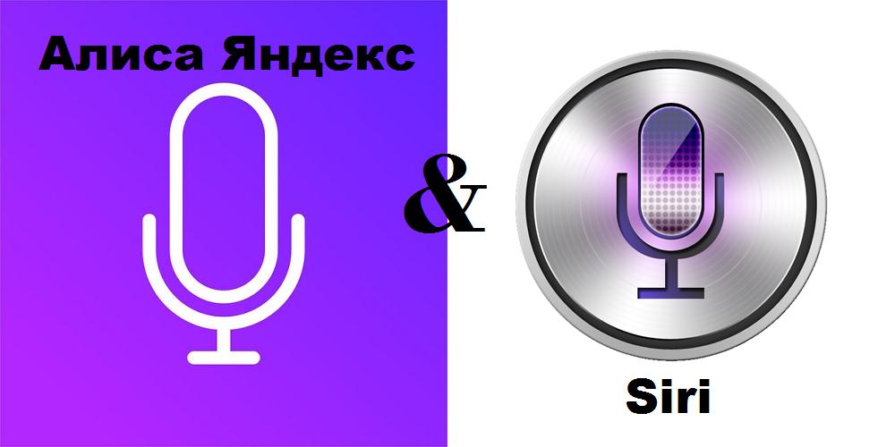 Сравнение Алиса и Siri
