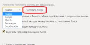 Алиса не ищет в Яндексе, Гугле 2