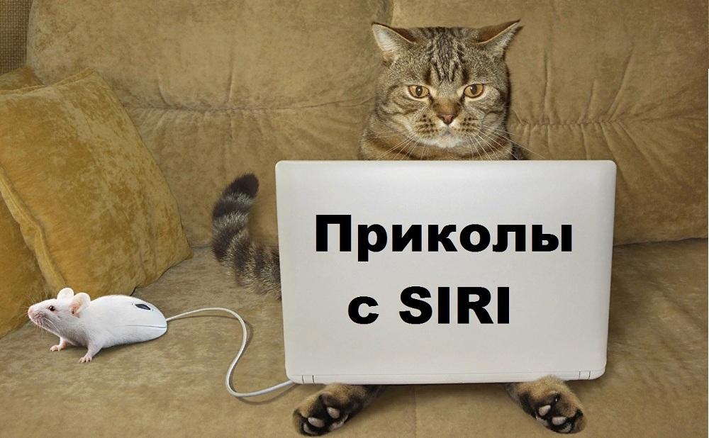 Приколы с SIRI 2