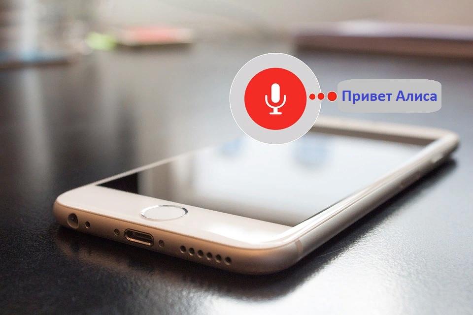 Яндекс Алиса в телефоне